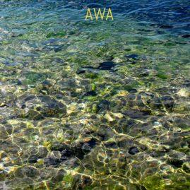 awa медитация в воде