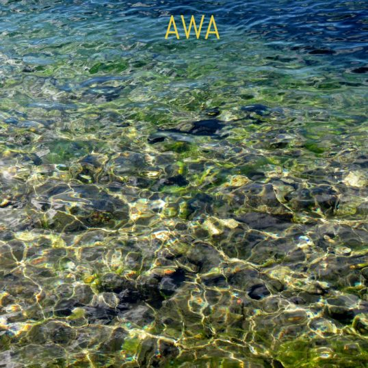 медитация в воде AWA